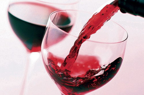 how-to-drink-red-wine-barkan-wine-5