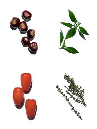 Clarins Double Serum ingredients 2