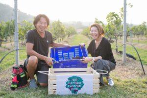 16_ผู้เข้าแข่งขันเก็บองุ่นไวน์ เทศกาล Harvest Festival 2018_resize